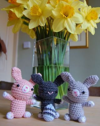 Bunnies and daffs