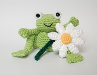 Frog and daisy normal satur lrg