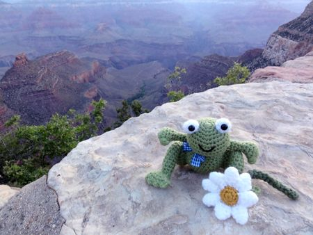 Frog Prince at the Grand Canyon